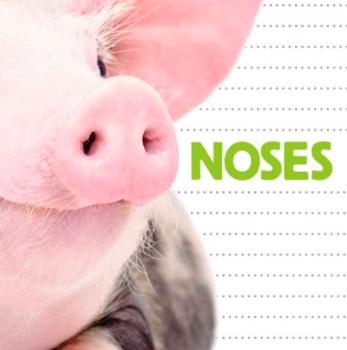 noses flowerpot press
